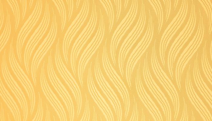 WJH-D42 Ti-gold 2.0